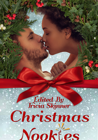 Christmas Nookies (Hot Holiday Reads Book 2) by Tricia Skinner