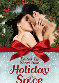 Holiday Spice (Hot Holiday Reads Book 1) by Short Fuse